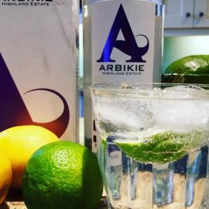 arbikie gluten free gin